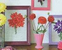 Цветущие георгины